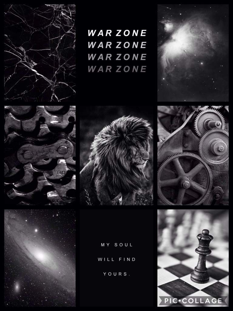Black lion tumblr aesthetic