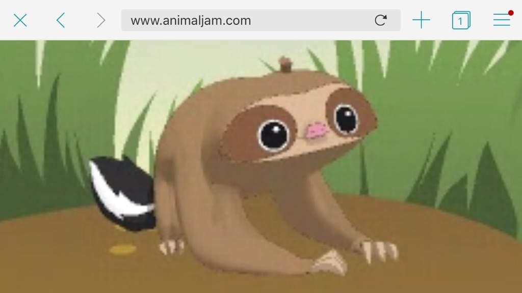 Image of: Codes Name Timid Cool Sloth Aj Amino Sloths Bio Aj Amino Amino