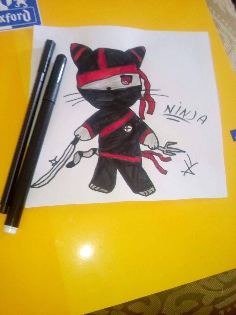 Mon Dessin Chat Ninja Anime Et Manga Amino