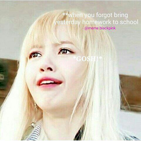 Meme Queen Lisa Blackpink Blackpink 블랙핑크 Amino