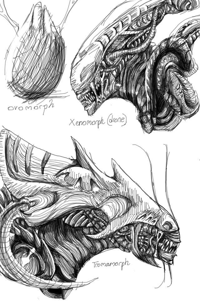Detailed sketches | Alien Versus Predator Universe Amino