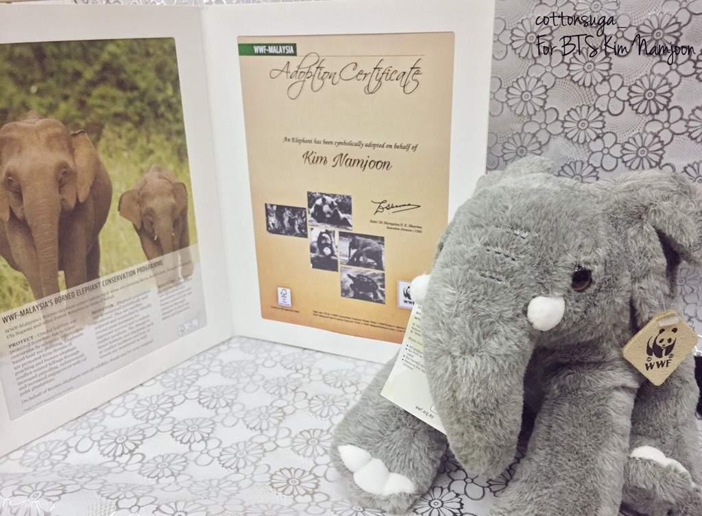 Fans Adopt An Elephant For Namjoon Under Wwf Malaysia Armys Amino