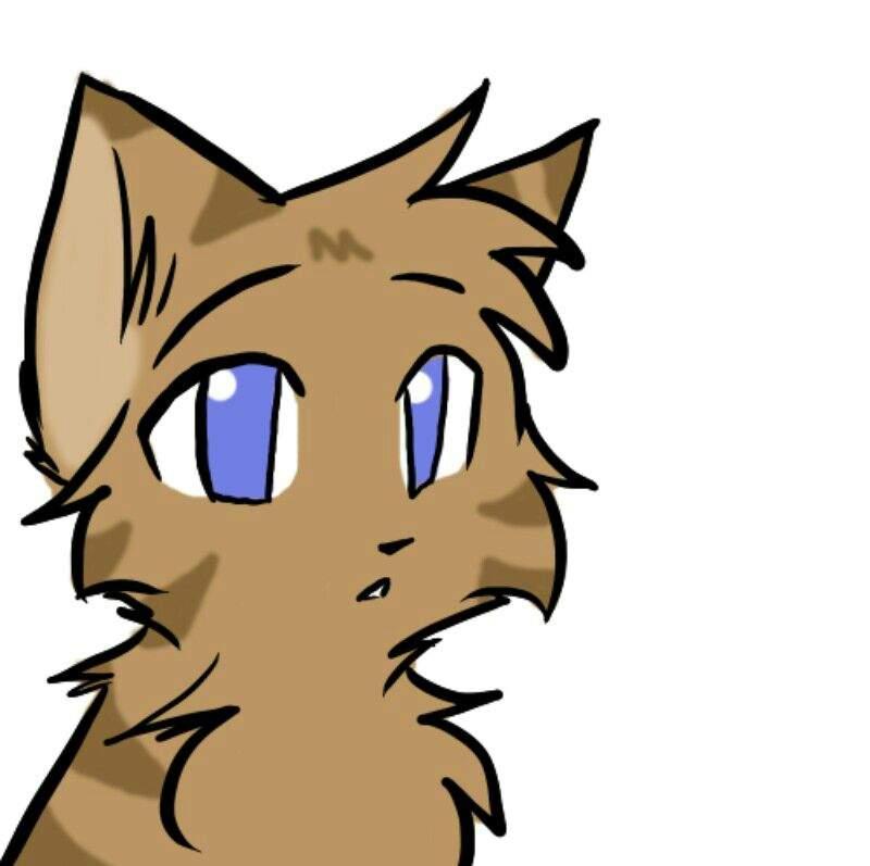 Картинки коты воители ветерок и верескоглазка