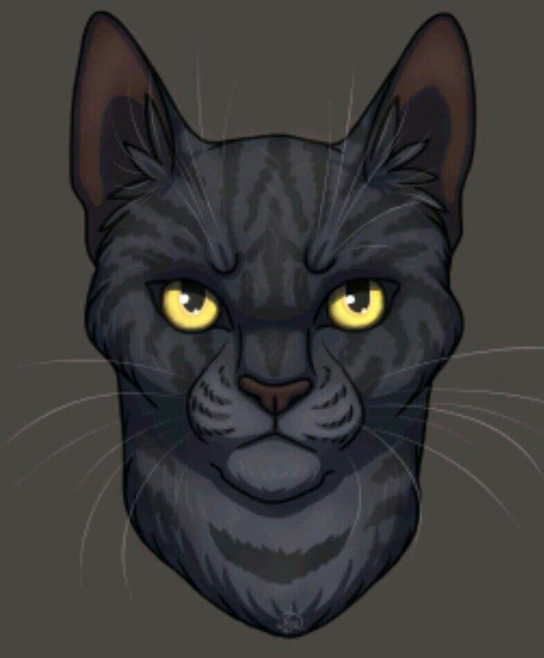 коты воители картинки частокола