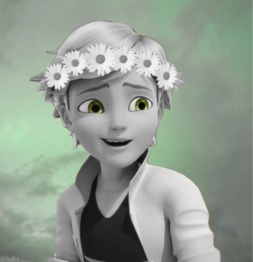 Flower crown edits new edit miraculous ladybug amino adrien so i made him next because of da shipping i wasnt at all sure on what he would look like but i like it his edit was the most difficult to izmirmasajfo