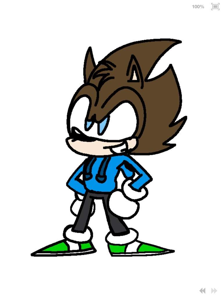 This My Oc Character Name Justin The Hedgehog Sonic The Hedgehog Amino