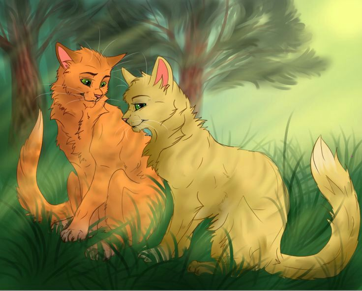 Warrior Cats Firestar And Sandstorm Love