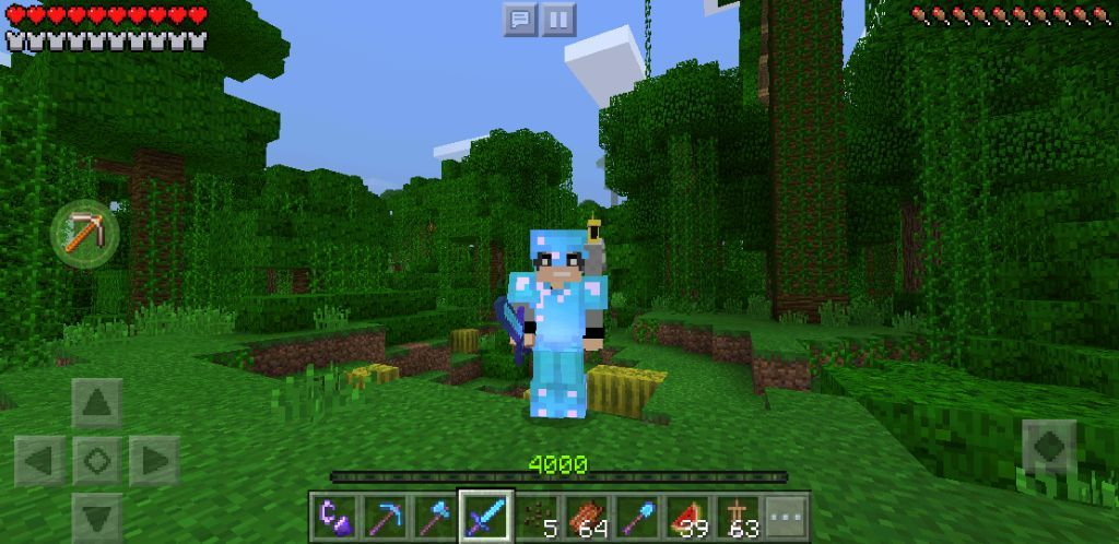 Me And My Pet Parrot I Wonder What Should I Call Him Any Ideas Or Suggestions For A Name Minecraft Amino