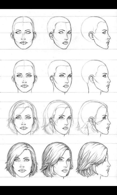 تعلم رسم اتجاهات الوجه امبراطورية الأنمي Amino