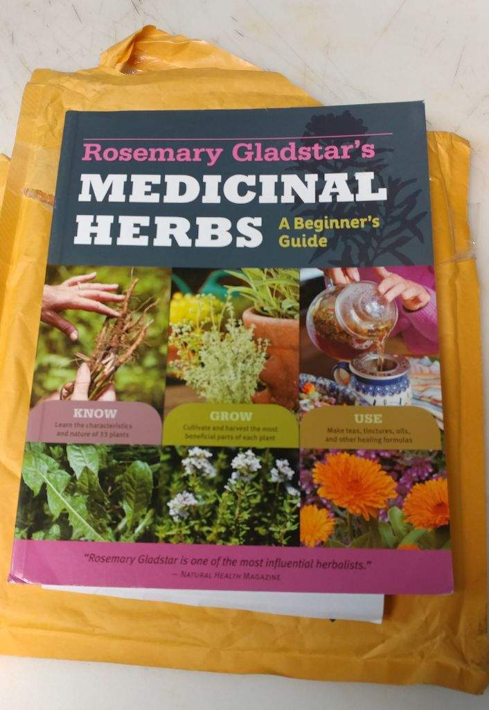 Books for the Beginner: Herbal And Stone Studies