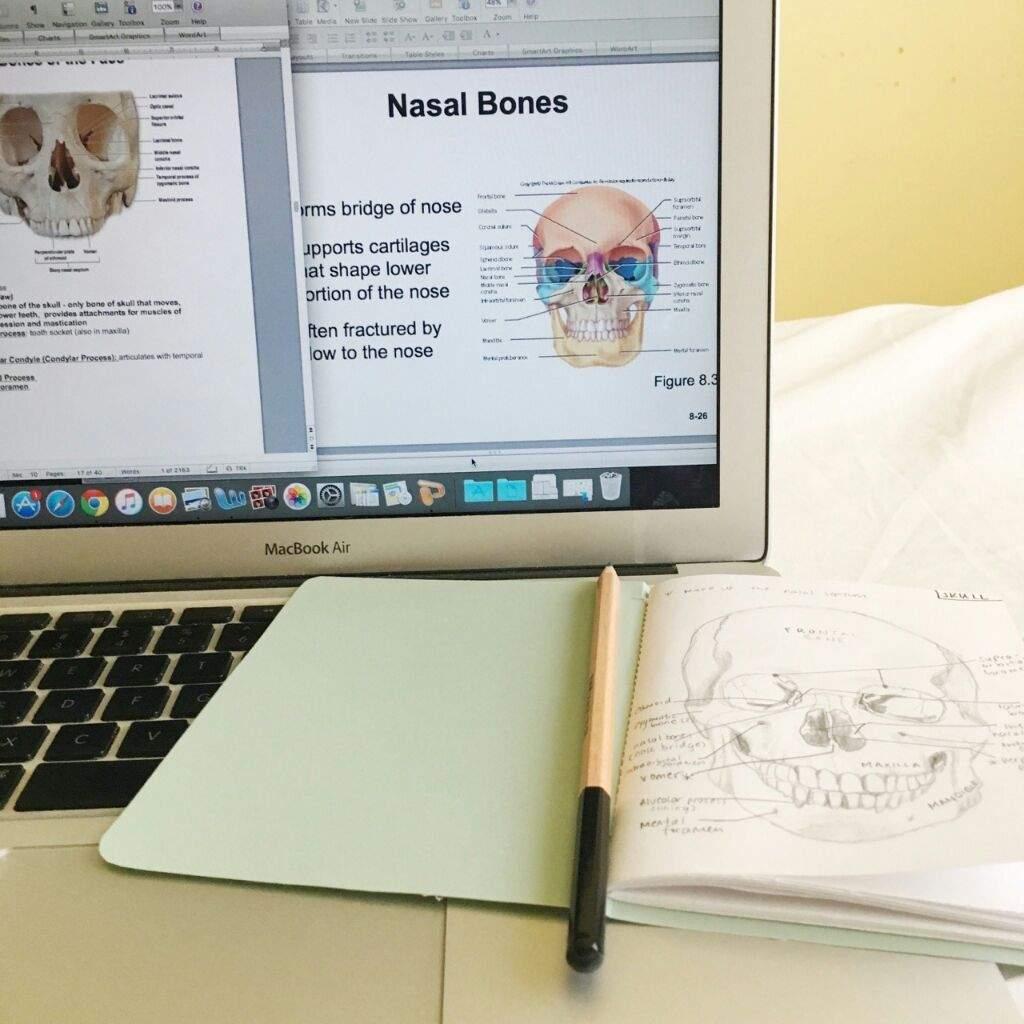How I Study for Anatomy & Physiology | Studying Amino Amino