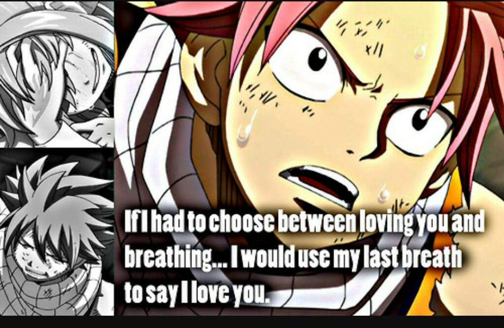 Fairy Tail Love Quotes Stunning Love Quotes Fairy Tail Amino