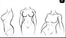 Corpocomo Desenhar O Corpo De Uma Mulher Perfeitamente Otanix Amino