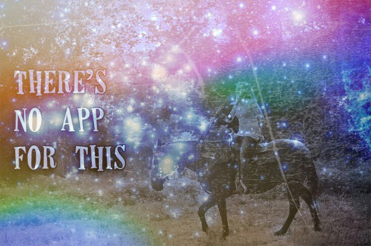 There is no app for horseback riding! | Star Stable Online Amino