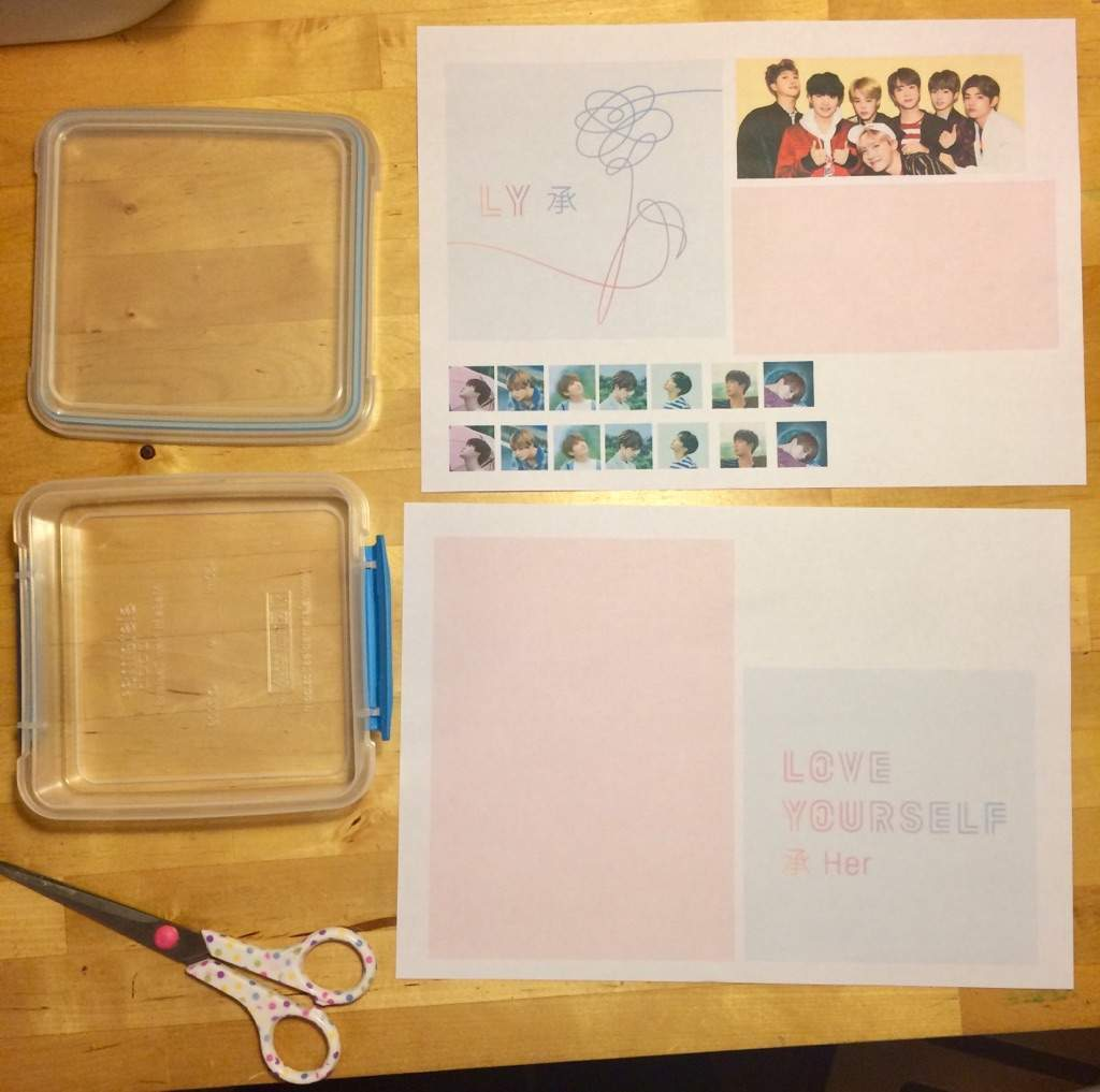 Love yourself diy lunchbox armys amino the love yourself album cover an old photo shoot picture the individual poster pictures and a pink background solutioingenieria Choice Image