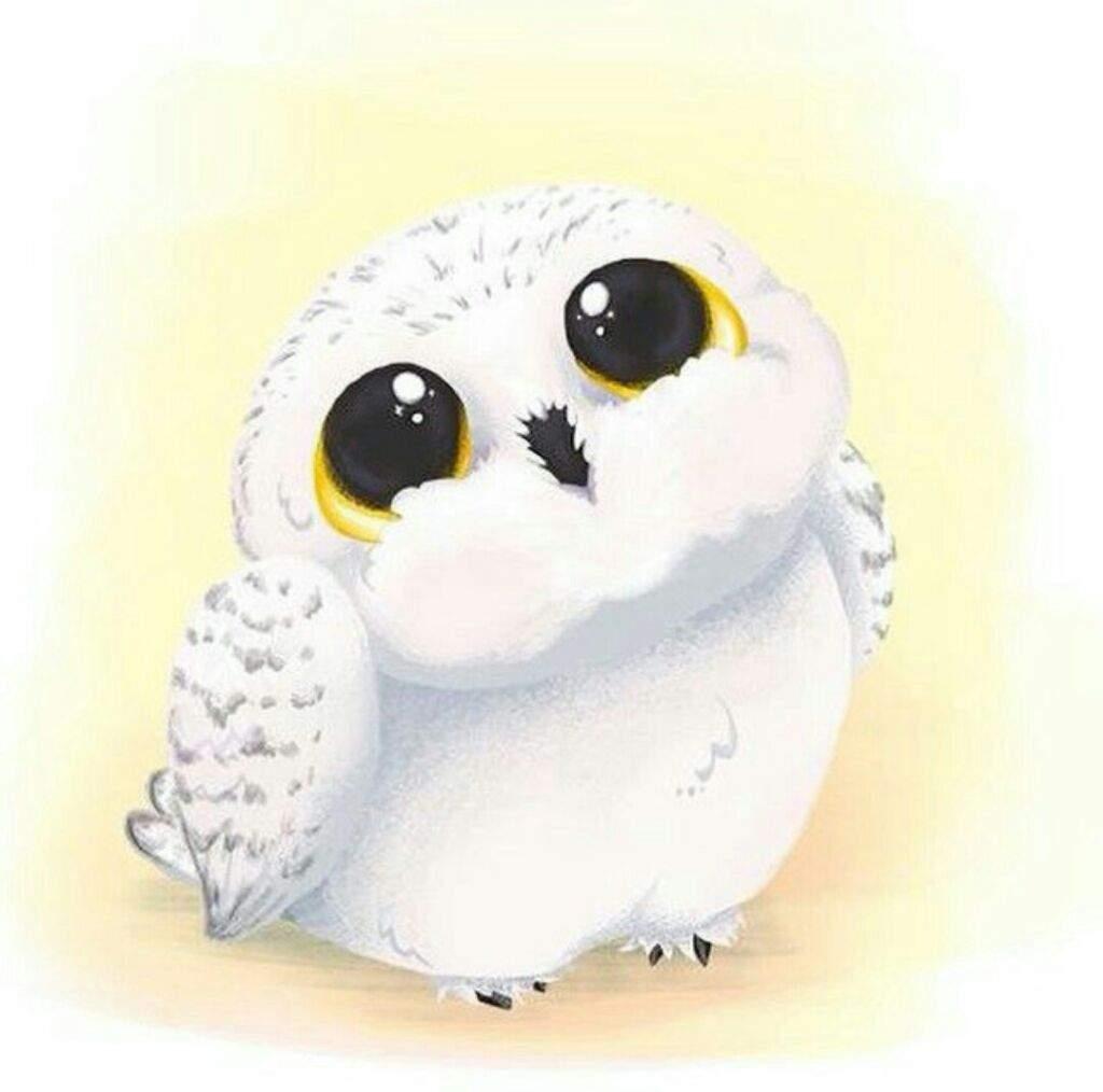 Kawaii Hedwig | Harry Potter Amino