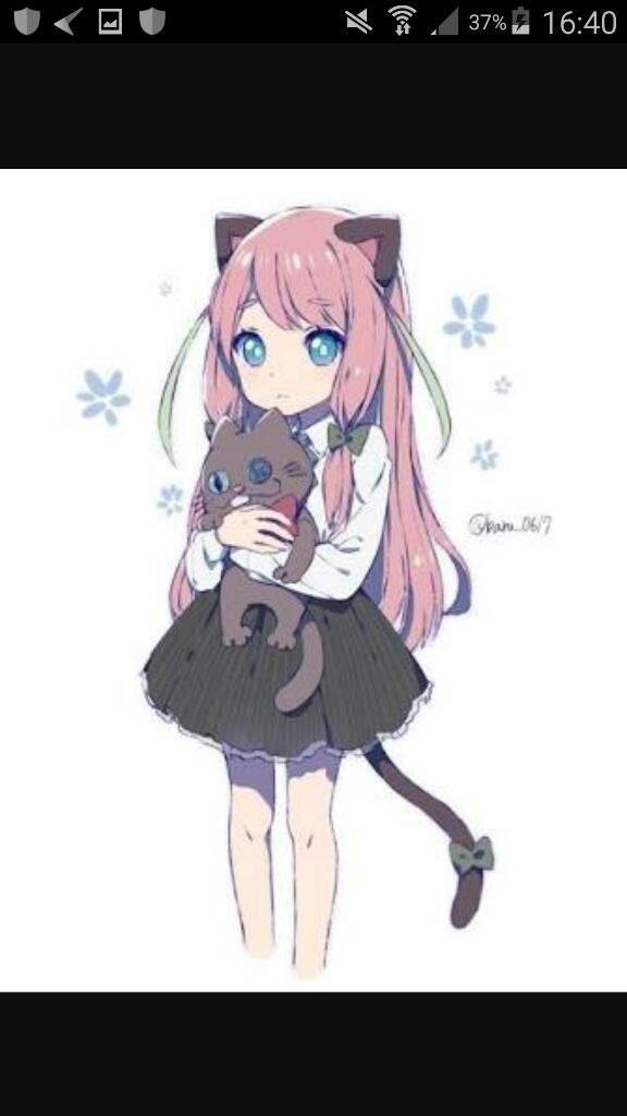 Cute Anime Cat Lover Anime Amino