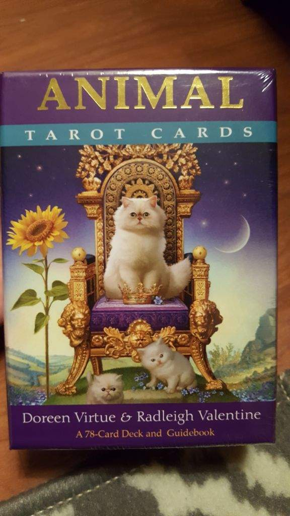 New Tarot Deck Animal Tarot The Witches Circle Amino