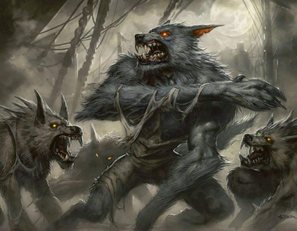 R/G Wolf/Werewolf Tribal Aggro EDH Deck Tech   MTG Amino