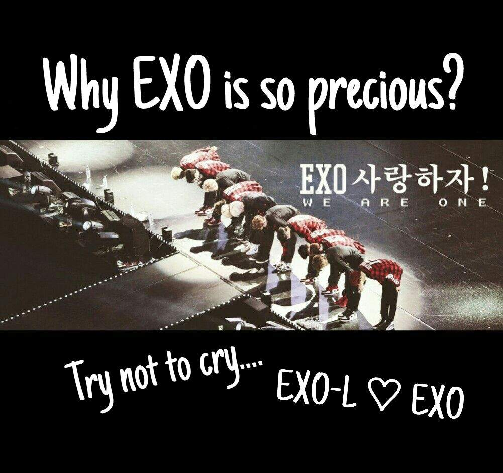 why exo is so precious motivation for exo ls exo 엑소 amino
