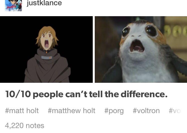 New Matt Holt Voltron Memes Holt Memes ÿ Memes ÿ Memes