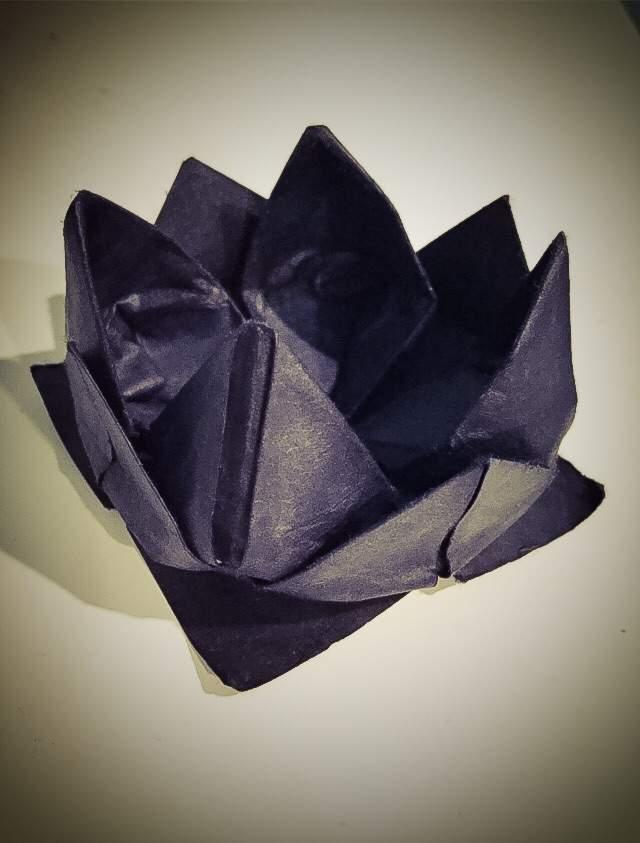 The Black Lotus Flower Sherlock Amino