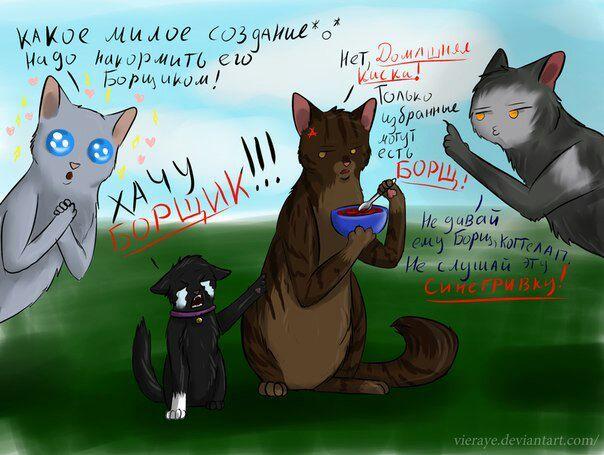 Коты воители бич приколы картинки, картинки девочка наушниками