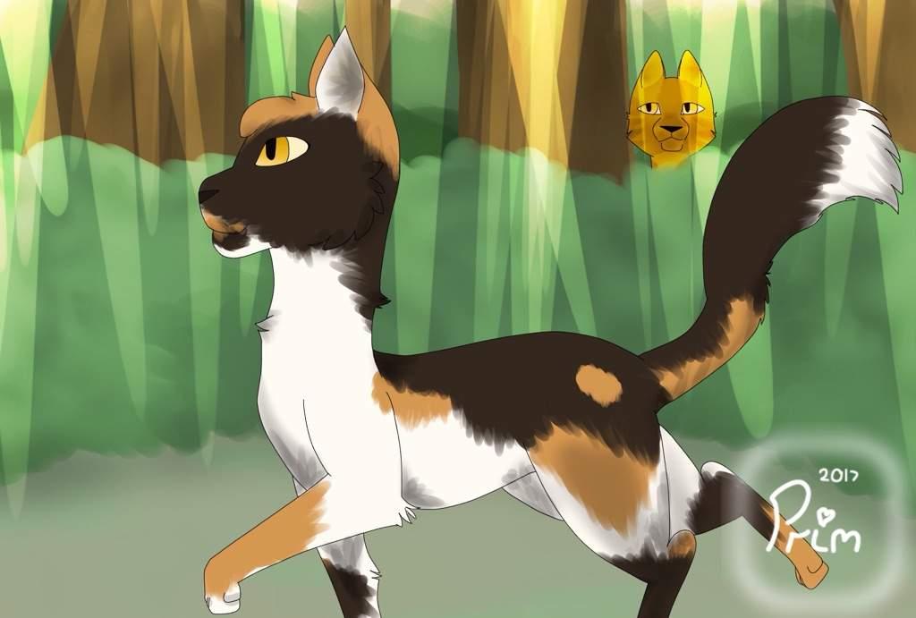 Sorreltail & Brackenfur | Warrior Cats Amino Amino
