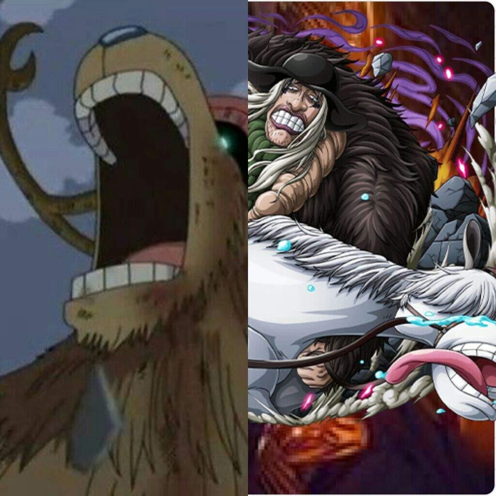 The Straw Hats vs The Blackbeard Pirates! | One Piece Amino