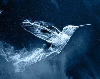 Magpie (Patronus) | Wiki | Harry Potter Amino