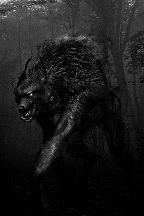 El Lobo Ocultismo Amino