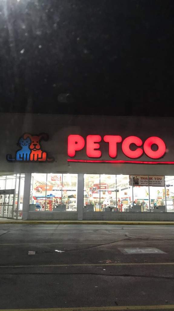 why you shouldn t shop at petco reptiles amino