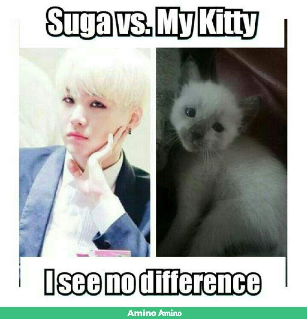 Min Yoongi Memes Aimebolanos Bts Btsmemes Btsmemes Btsmemes Bts Kpop Bts防弾少年団 Minyoongi Suga Vingle Interest Network