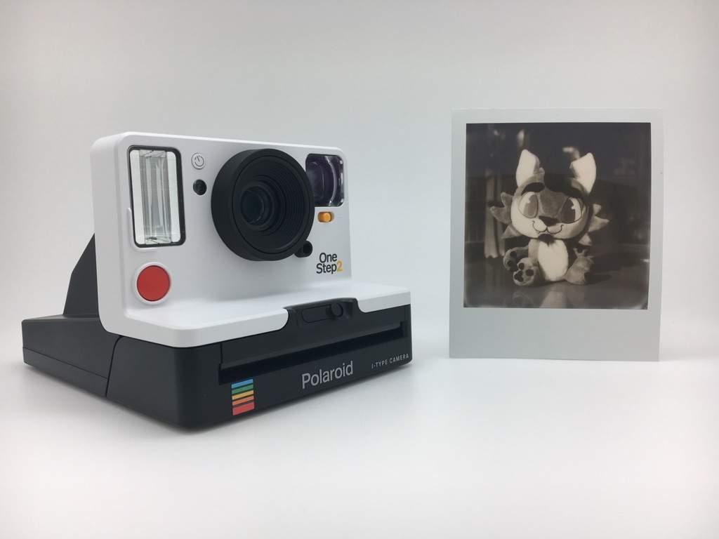 Polaroid Camera Urban Outfitters : Project retro days and the polaroid onestep camera furry amino