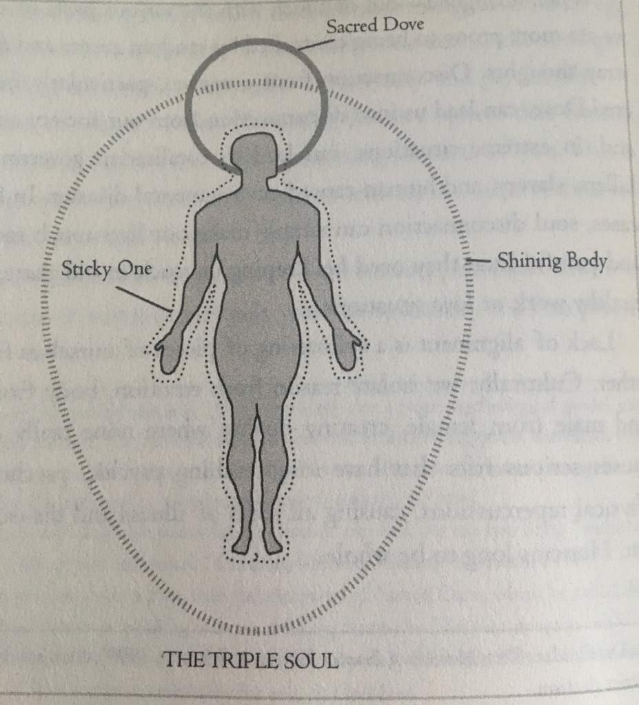 Aligning the Triple Soul: Feri Tradition   Pagans & Witches Amino