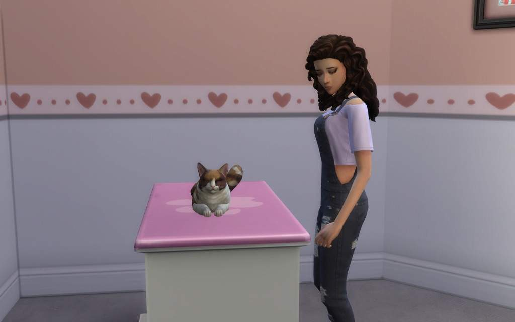 Adopting Stray Dogs Sims