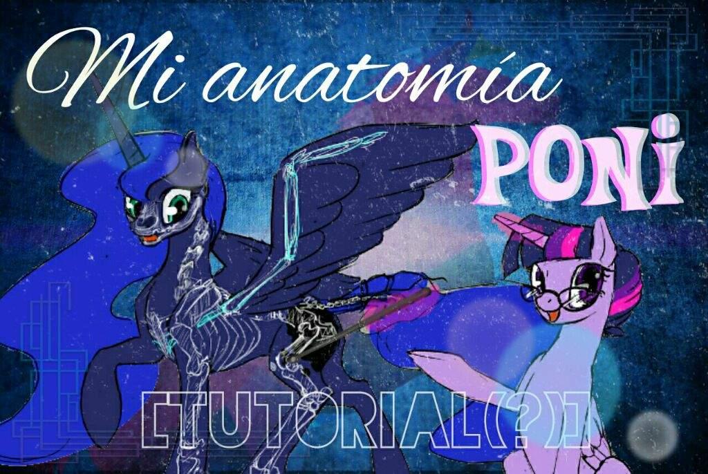 Mi anatomia poni [tutorial(?)] | MyLittlePony Español Amino