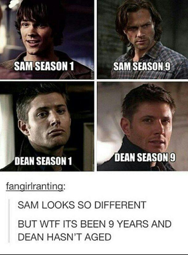 supernatural memesquotes from facebook supernatural amino