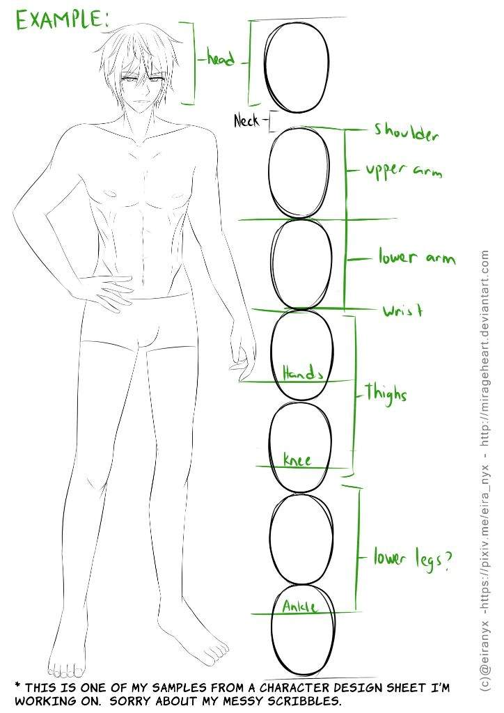 Perfect Male Anatomy Tutorial Collection - Internal organs diagram ...