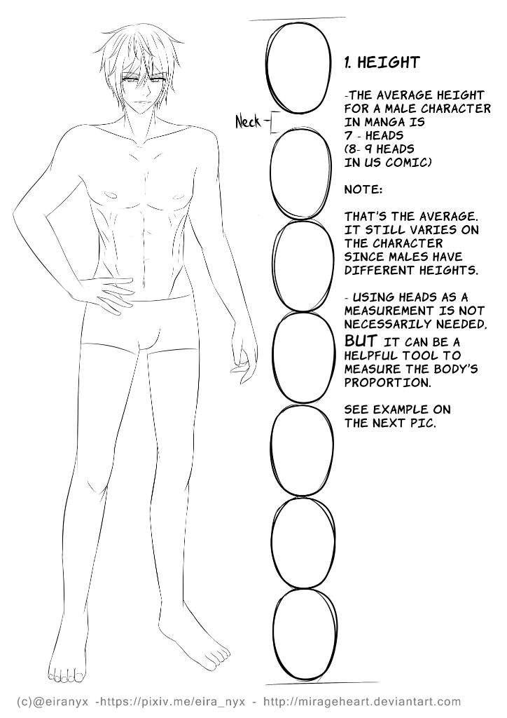 Male anatomy tutorial | Anime Art Amino