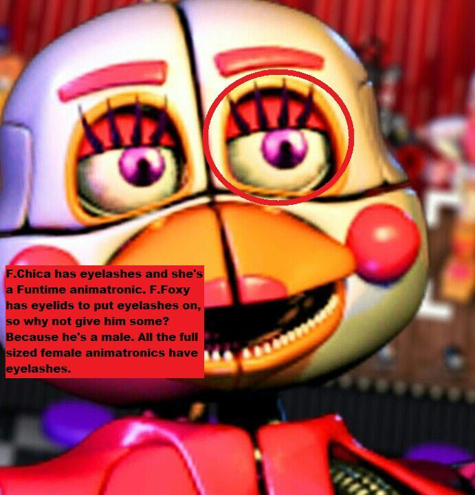 Evidence That Funtime Foxy is Male  | Five Nights At