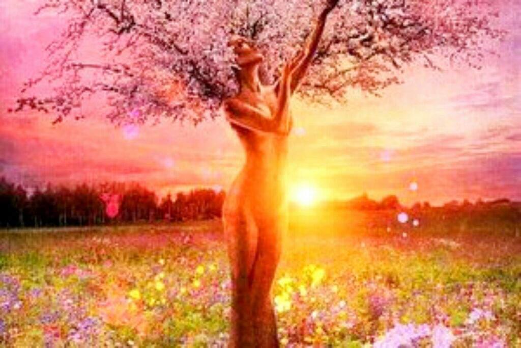 Resultado de imagen de hadas solsticio de verano