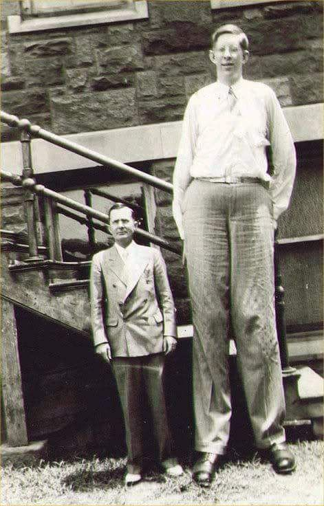 how tall could robert wadlow have been science amino