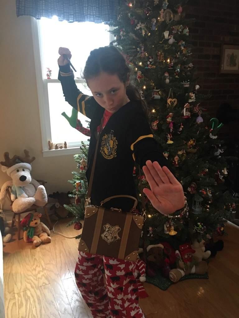 Harry Potter Christmas Gifts.My Harry Potter Christmas Presents Harry Potter Amino