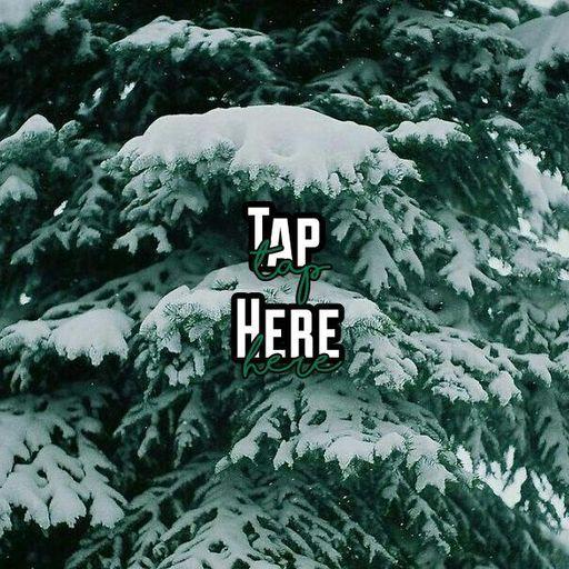 Sunnyside Trailer Park Issue 3: Christmas on the South ...