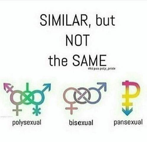 Omnisexuality