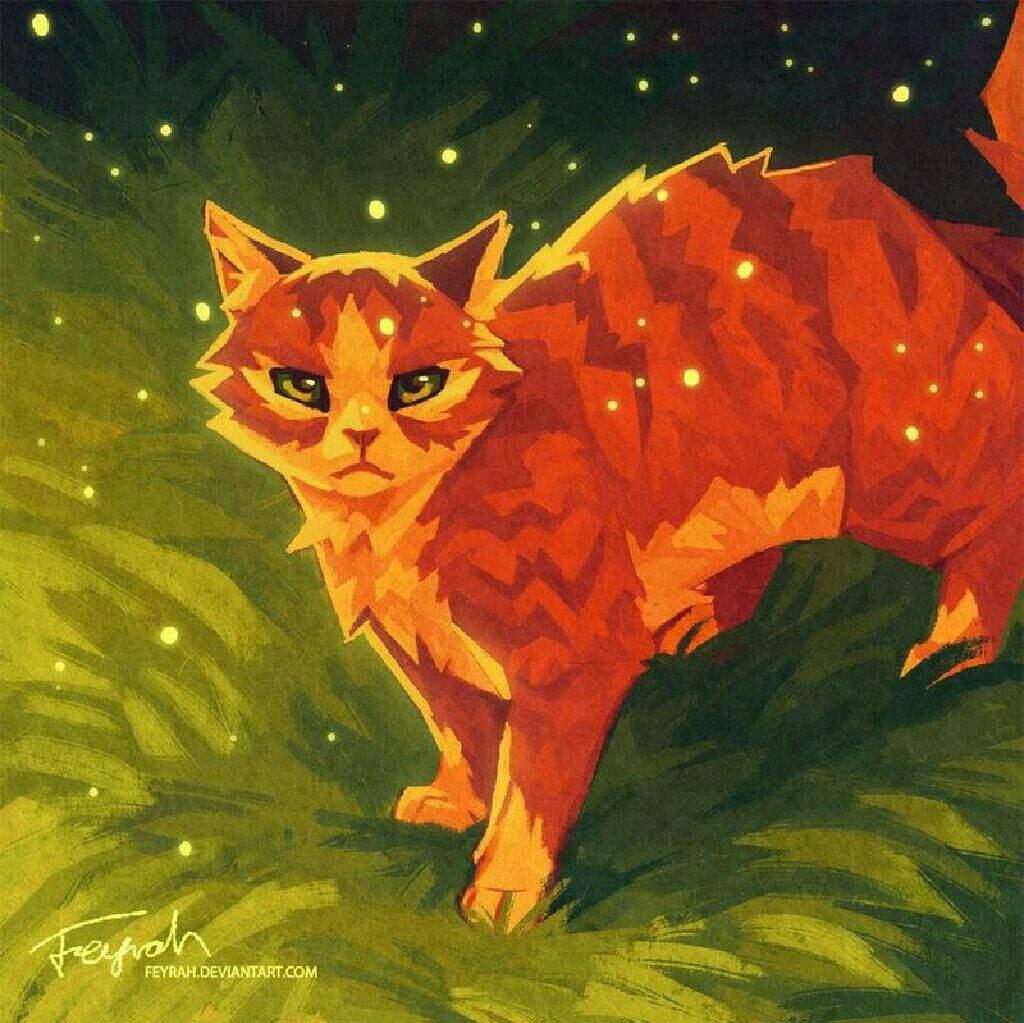 Картинки рыжих котов воителей, открытки своими руками