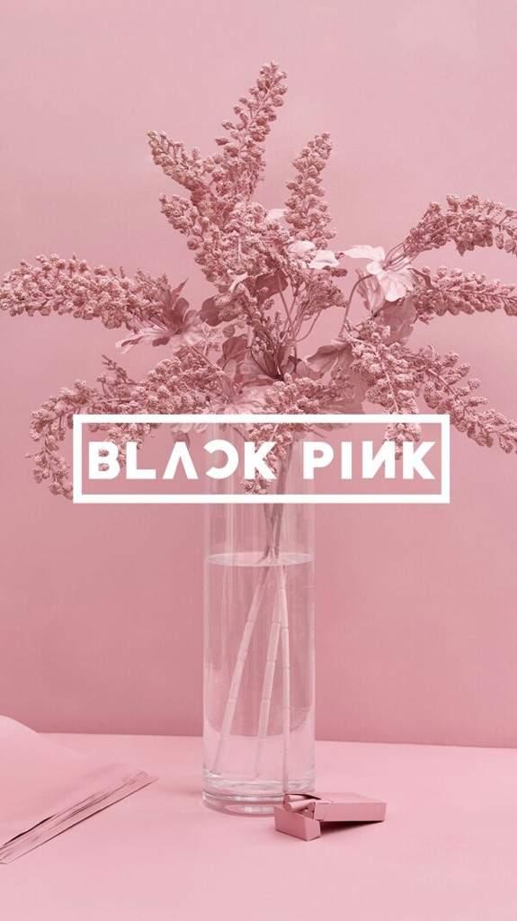 Blackpink Wallpaper K Pop Amino