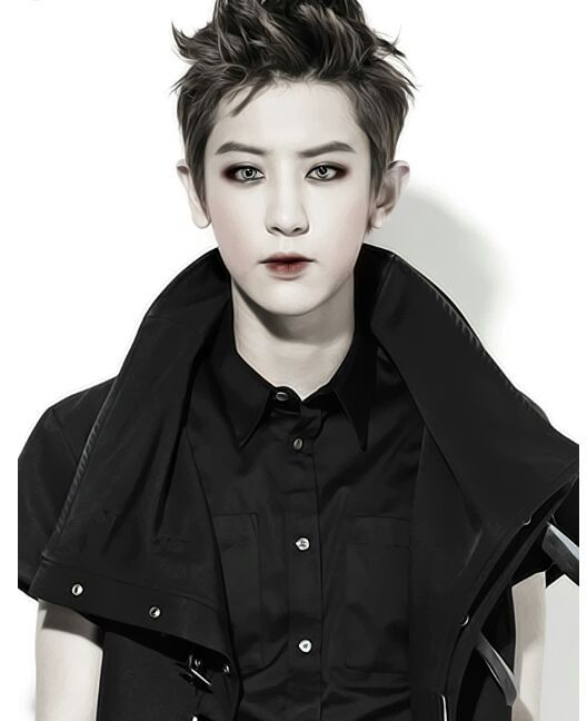 EXO as Twilight characters! | EXO (엑소) Amino