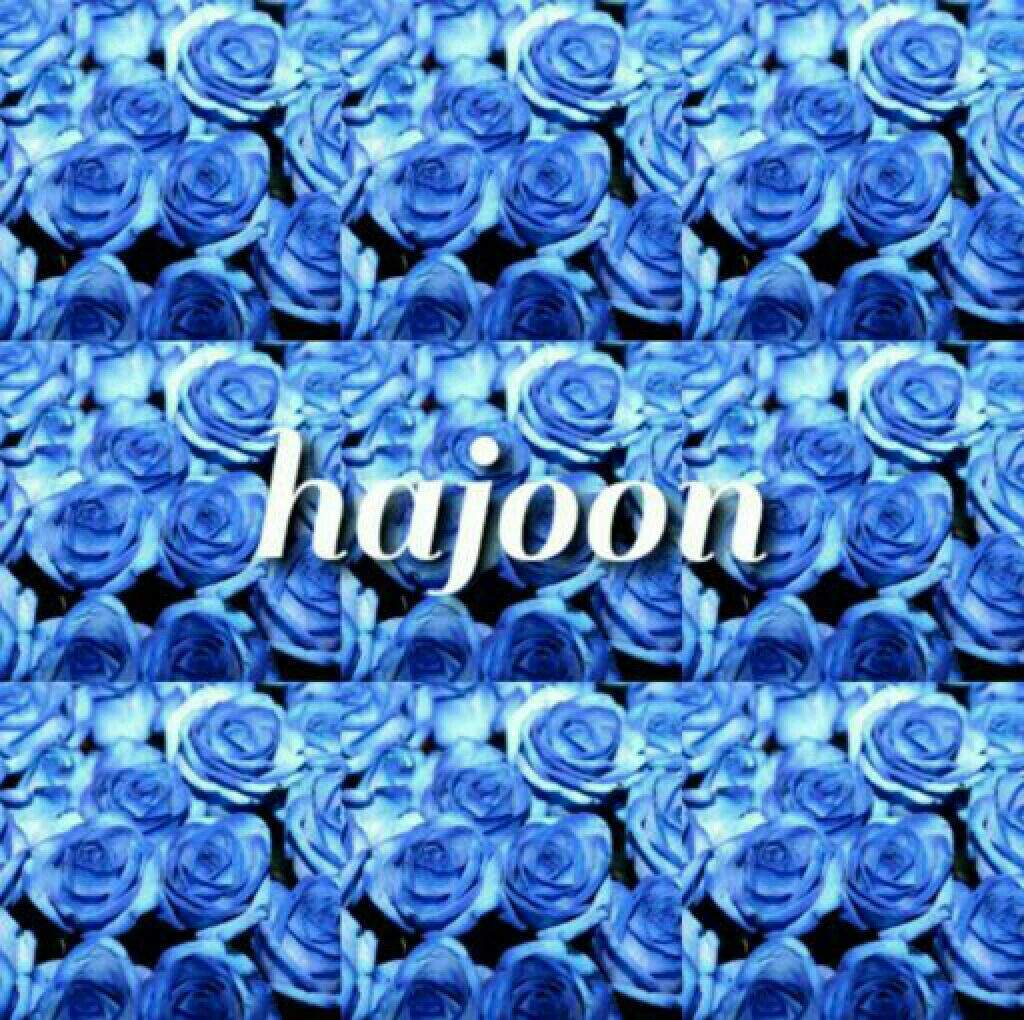 The rose flowers and group name meaning k pop amino flowerblue meaningmiracle jaehyeong izmirmasajfo
